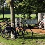 Um die Umgebung kennen zu lernen, leihen Sie sich eines unserer Fahrräder.